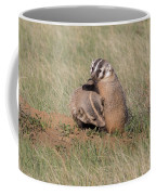 American Badger Cub Climbs On Its Mother Coffee Mug
