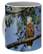 American Bald Eagle 2 Coffee Mug
