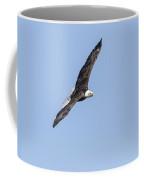 American Bald Eagle 2015-27 Coffee Mug