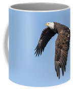 American Bald Eagle 2017-5 Coffee Mug