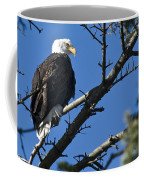 American Bald Eagle Coffee Mug