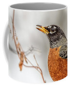 American Beauty Coffee Mug