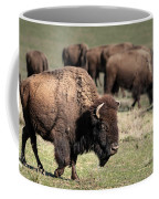 American Bison 5 Coffee Mug by James Sage