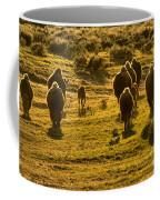 American Bison Sunset March Coffee Mug