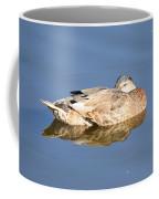 American Black Duck Snoozing Coffee Mug