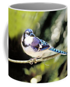 American Blue Jay On Alert Coffee Mug