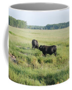 American Cattle Coffee Mug