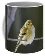 American Gold Finch Coffee Mug