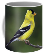 American Golden Finch Coffee Mug