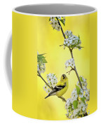 American Goldfich Male Coffee Mug