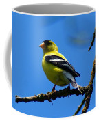 American Goldfinch 1 Coffee Mug