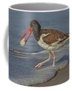 American Oystercatcher Grabs Breakfast Coffee Mug by Susan Candelario