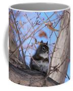 American Red Squirrel Coffee Mug
