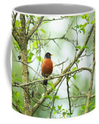 American Robin On Tree Branch Coffee Mug