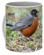 American Robin With Muddy Beak Coffee Mug