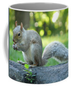 American Squirrel Coffee Mug
