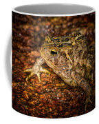American Toad Coffee Mug