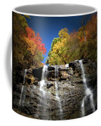Amicalola Falls Coffee Mug