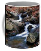 Amicalola Stream Coffee Mug