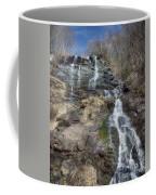 Amicolola Falls Coffee Mug