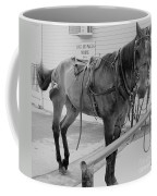Amish Horse Coffee Mug