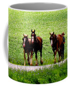 Amish Horse Team Coffee Mug