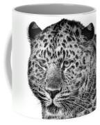 Amur Leopard Coffee Mug by John Edwards