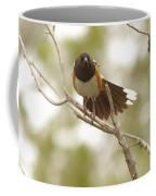 An Angry Towhee Coffee Mug