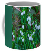 An Early Spring Coffee Mug