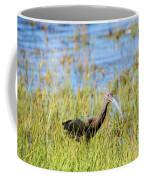An Ibis In The Grass Coffee Mug