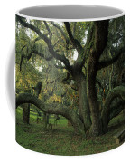 An Old Live Oak Draped With Spanish Coffee Mug by Michael Melford
