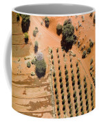 An Olive Grove Between The Succulent Coffee Mug