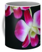 An Orchid Coffee Mug
