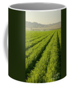 An Organic Carrot Field Coffee Mug