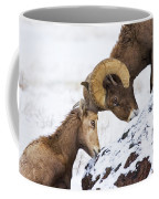 An Uphill Battle Coffee Mug
