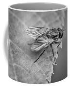 Anatomy Of A Pest - Bw Coffee Mug