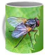 Anatomy Of A Pest Coffee Mug