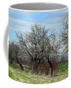 Ancient Apples Budding Out Coffee Mug