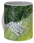 Ancient Architecture Coffee Mug