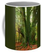 Ancient German Oak Trees In Sababurg Coffee Mug