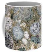 Ancient Lake Bed Coffee Mug