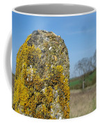 Ancient Stone Coffee Mug