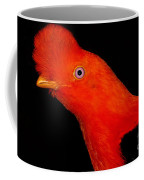 Andean Cock Of The Rock Coffee Mug