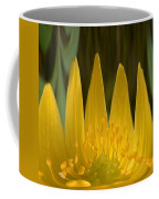 Anemone Flames Coffee Mug
