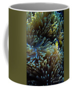 Anemonefish Hiding Coffee Mug