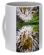 Anenome Reflection Coffee Mug