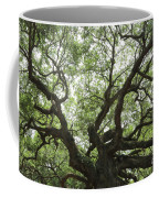 Angel Oak Branches Coffee Mug