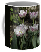 Angelique Peony Tulips Squared Coffee Mug