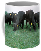 Angus Cattle Coffee Mug