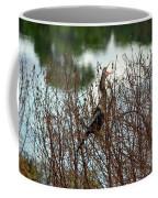 Anhinga Calling Coffee Mug